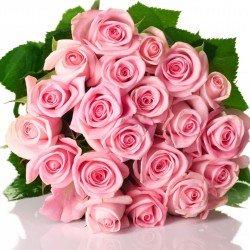 Букет 25 роз!!!