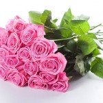 Роза (Россия)